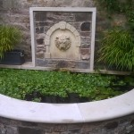A Grand Water Feature (5)